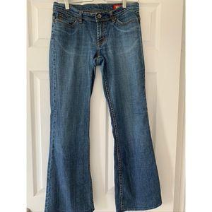 Express X2 Denim Laboratory Jeans